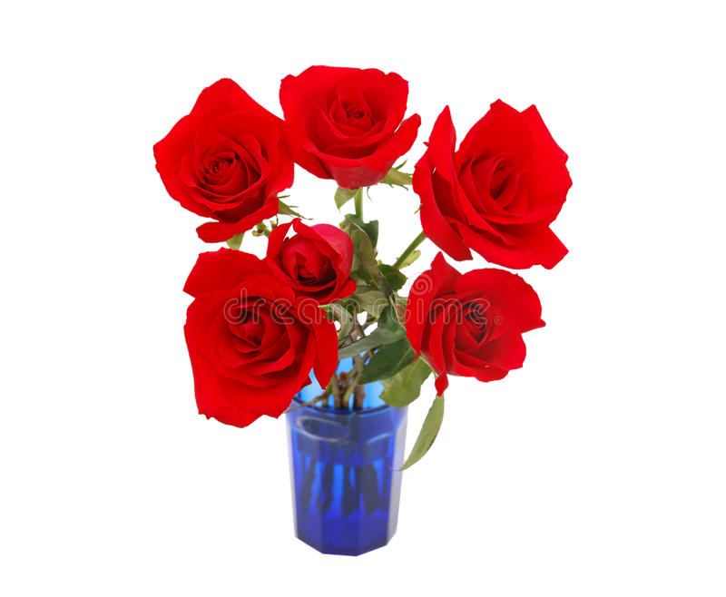 Flor de las rosas imagen de archivo