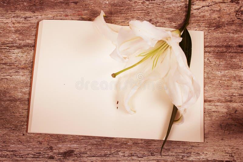 Download Flor De Lilly No Livro De Nota Foto de Stock - Imagem de relaxe, flores: 65581338
