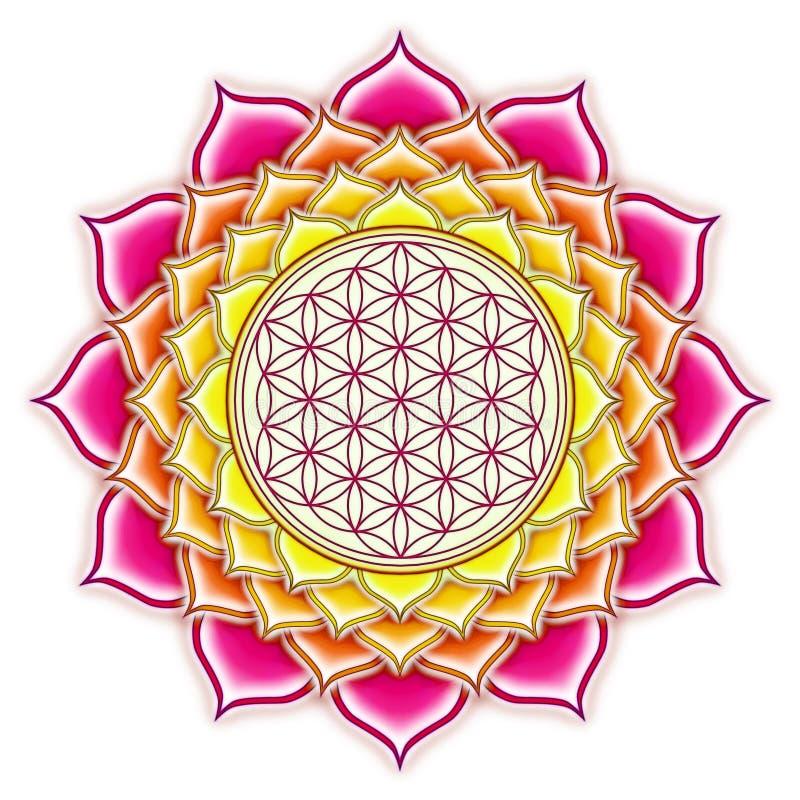 Flor de Live Lotus libre illustration