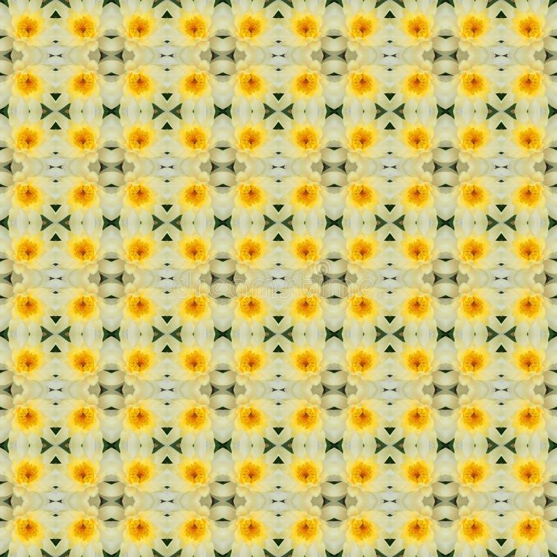 Flor de loto amarilla en la plena floración inconsútil ilustración del vector