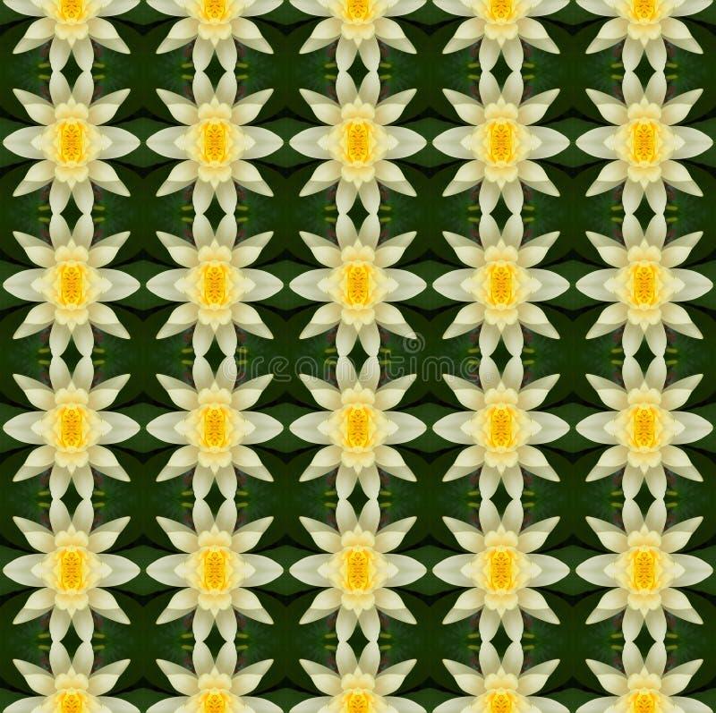 Flor de loto amarilla en la plena floración inconsútil stock de ilustración