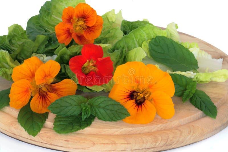 Flor de Nasturtian y ensalada de la hierba fotografía de archivo libre de regalías