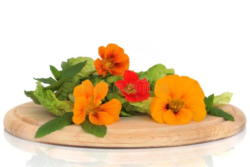 Flor de Nasturtian y ensalada de la hierba foto de archivo