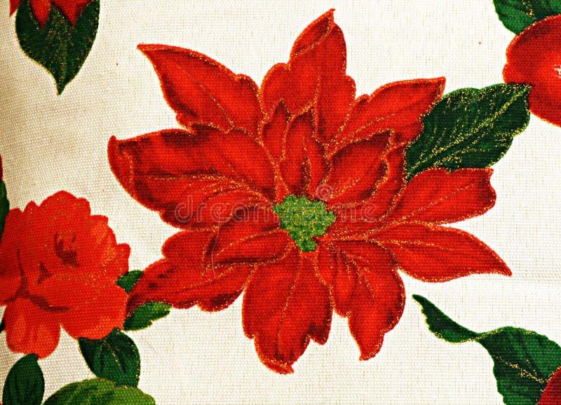 Flor de Navidad foto de archivo libre de regalías
