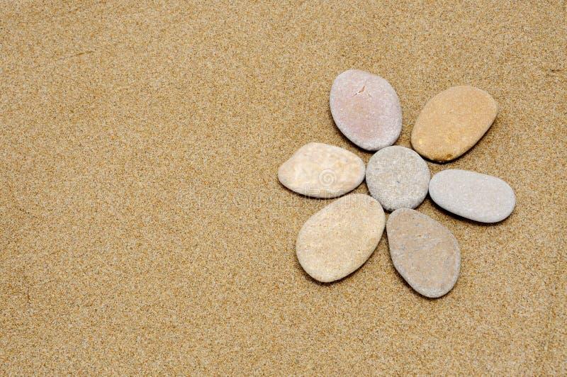 Flor de pedra fotografia de stock royalty free