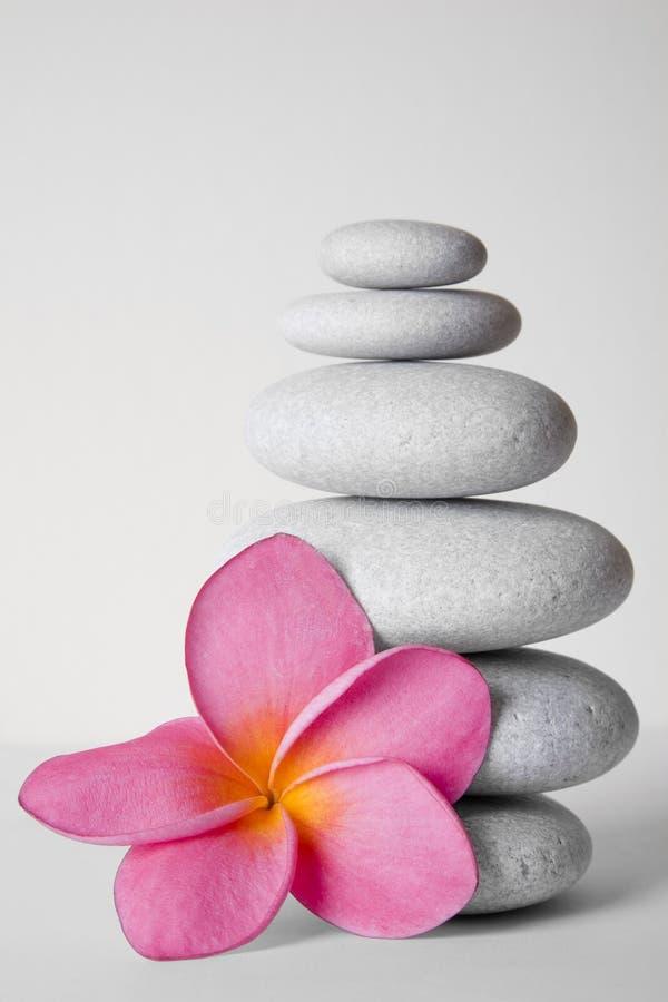 Flor de pedra da pilha e do Frangipani foto de stock royalty free