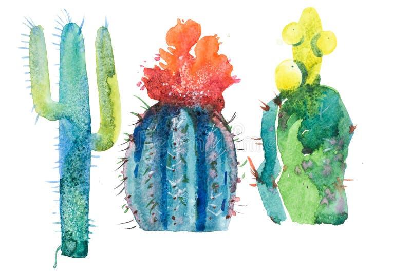 Flor de punta dibujada mano de la floración del cactus de la acuarela ilustración del vector