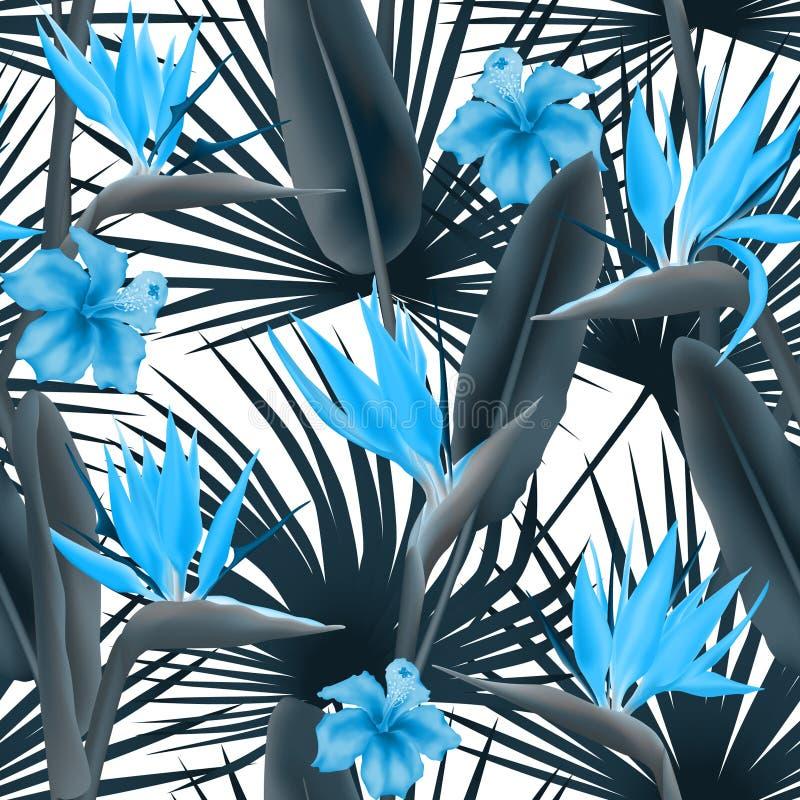 Flor de Reginae do Strelitzia igualmente conhecida como a flor do guindaste ou o pássaro de paraíso, hibiscus havaiano e folhas d ilustração royalty free