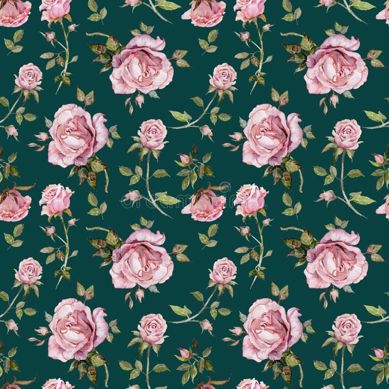 Flor de Rosa em um galho Teste padrão floral sem emenda Pintura da aguarela Ilustração desenhada mão ilustração do vetor