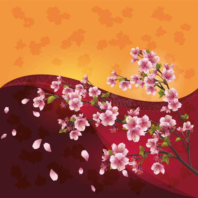Flor de Sakura - árvore de cereja japonesa ilustração royalty free