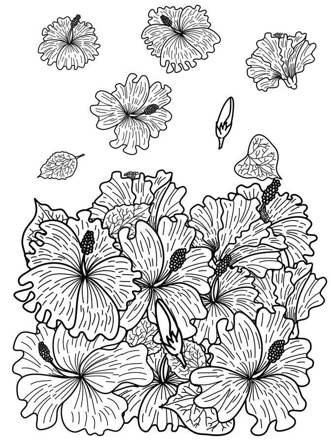 Flor de Sakura para imprimir no papel ilustração stock