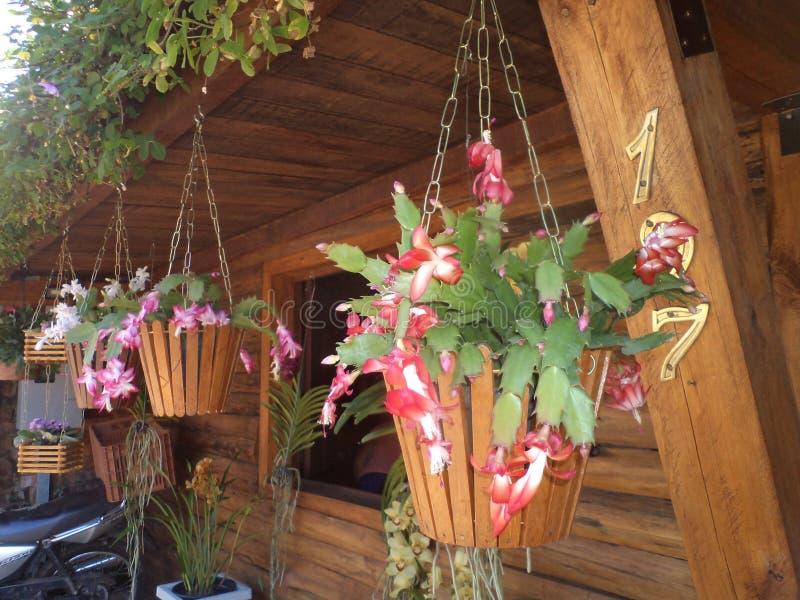 Flor de seda en florero hecho a mano de madera imagen de archivo