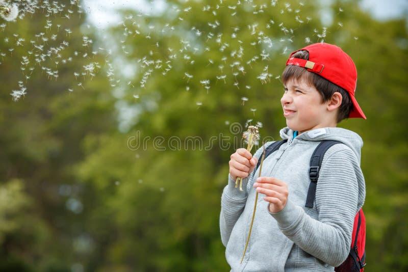 Flor de sopro do dente-de-le?o da crian?a feliz fora Menino que tem o divertimento no parque da mola Fundo verde borrado imagens de stock royalty free