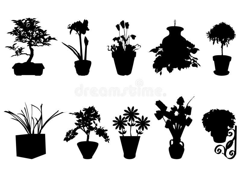 Flor decorativa no potenciômetro ilustração stock