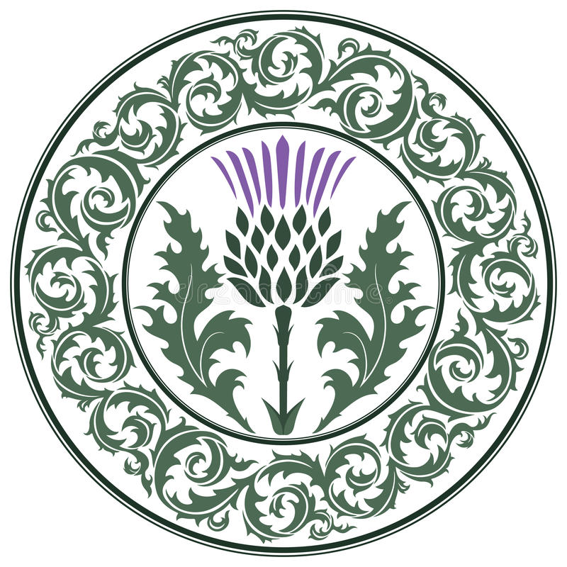 Flor del cardo y cardo redondo de la hoja del ornamento El símbolo de Escocia ilustración del vector