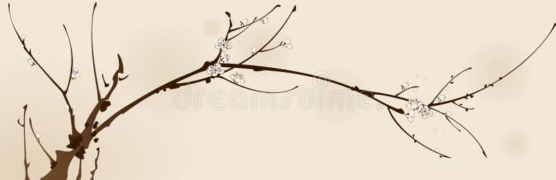 Download Flor Del Ciruelo Con La Línea Diseño Ilustración del Vector - Ilustración de flor, renacimiento: 41915678