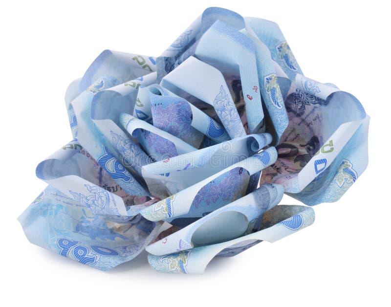 Flor del dinero en el fondo blanco fotografía de archivo libre de regalías