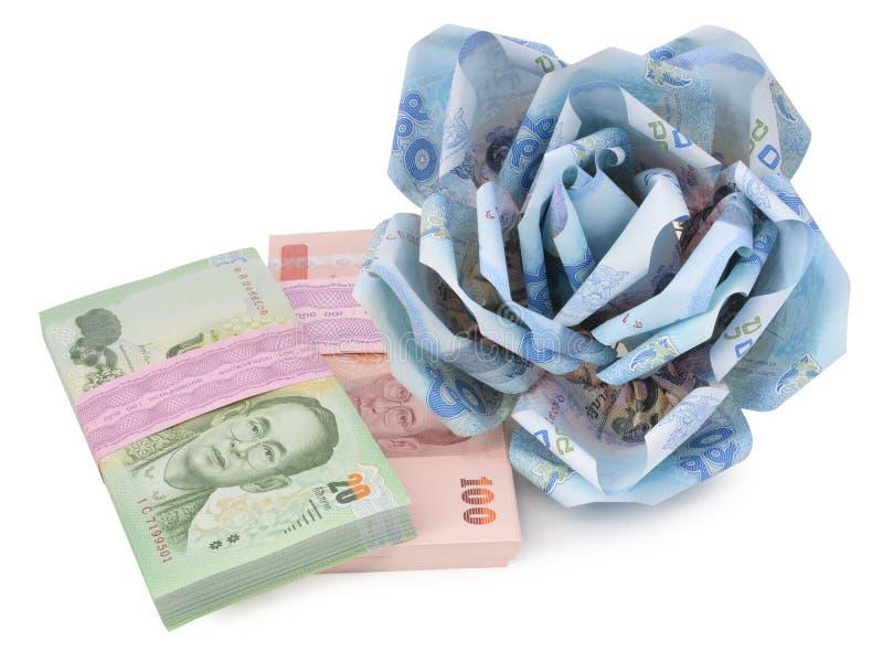 Flor del dinero en el fondo blanco fotos de archivo libres de regalías