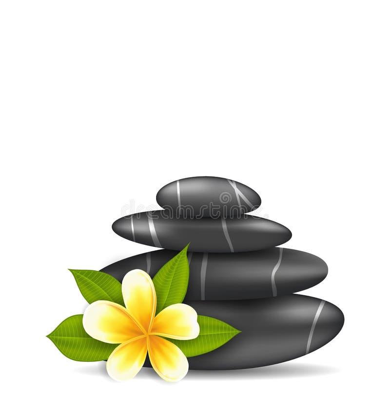 Flor del Frangipani (plumeria) y pirámide Zen Spa Stones ilustración del vector
