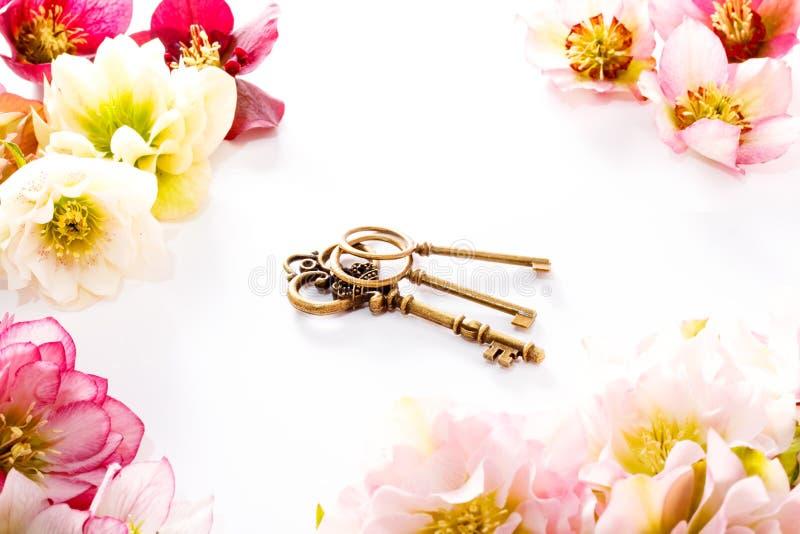Flor del Hellebore u orientalis del Helleborus y llave antiqued aislados en blanco imagen de archivo