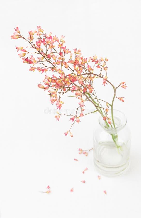 Download Flor del Heuchera foto de archivo. Imagen de rojo, bastante - 42440744