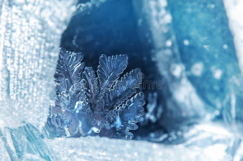 Flor del hielo foto de archivo libre de regalías