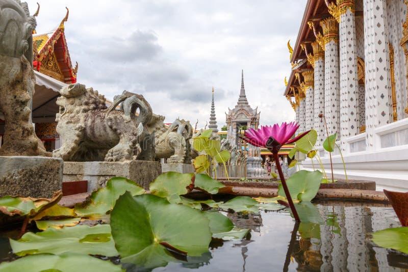 Flor del lirio de agua con las estatuas de los tigres en Wat Arun Temple en Bangkok fotos de archivo libres de regalías