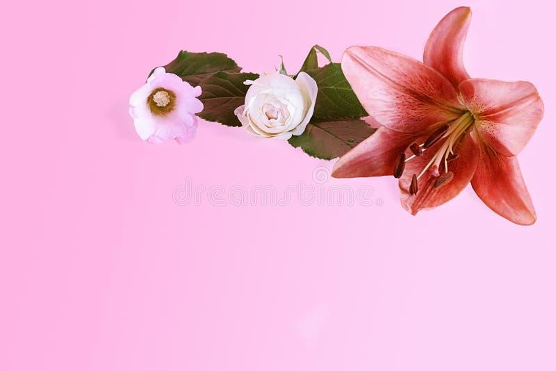 Flor del lirio real con otras flores en un fondo en colores pastel de la lila dulce con el espacio de la copia foto de archivo