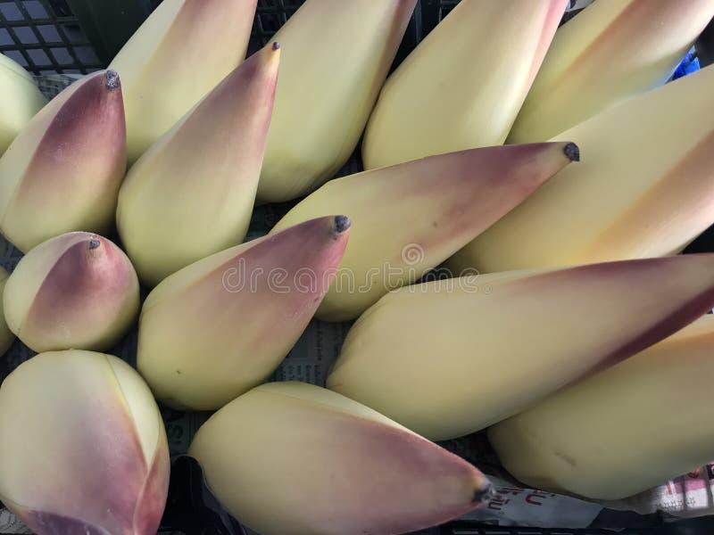 Flor del plátano foto de archivo libre de regalías