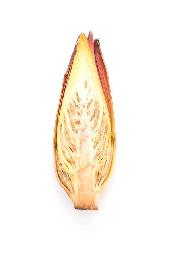 Flor del plátano en el fondo blanco foto de archivo