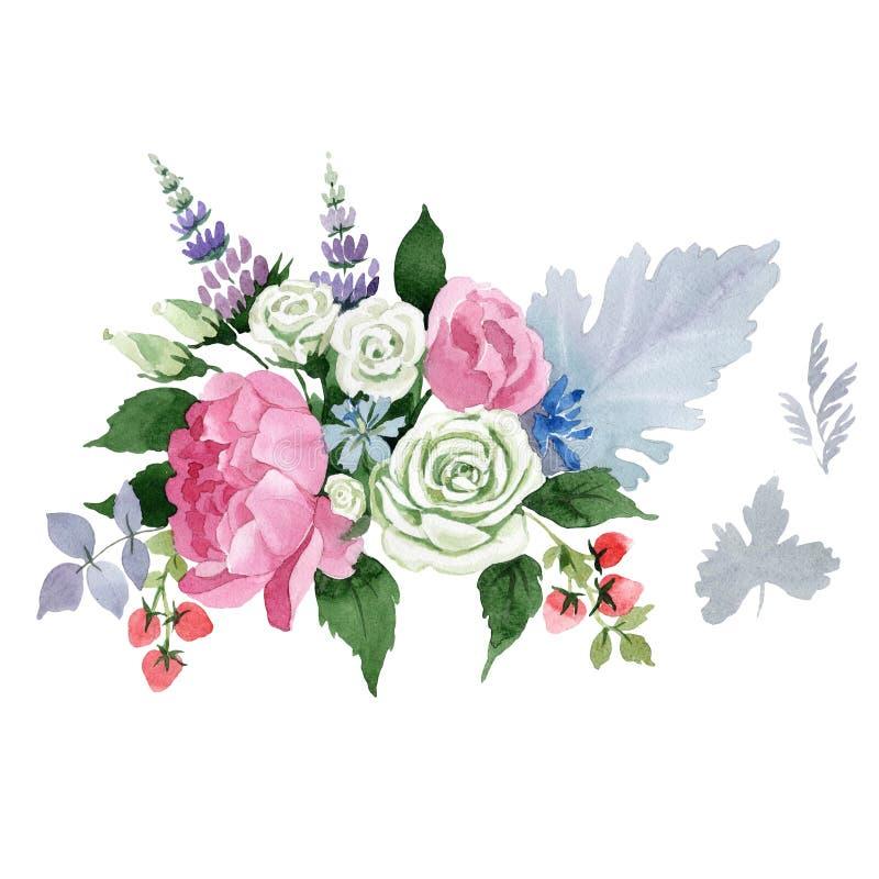 Flor del ramo Flor botánica floral Wildflower salvaje de la hoja del verano aislado libre illustration