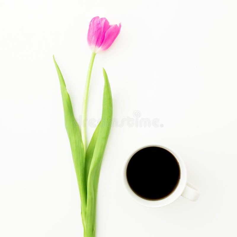 Flor del tulipán y taza de café sólo en el fondo blanco Endecha plana imágenes de archivo libres de regalías
