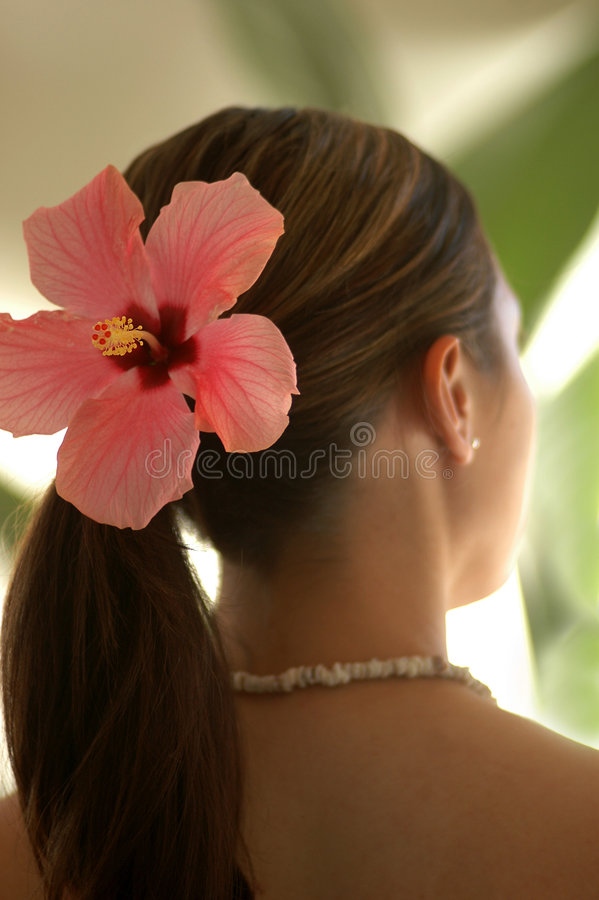 Flor desgastando do hibiscus da mulher imagens de stock