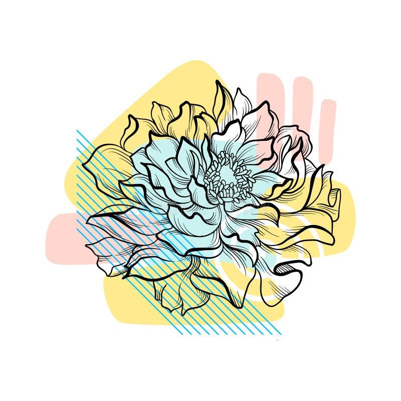 Flor dibujada mano con el contexto abstracto colorido Composición botánica Elemento del vector para casarse la invitación o ilustración del vector