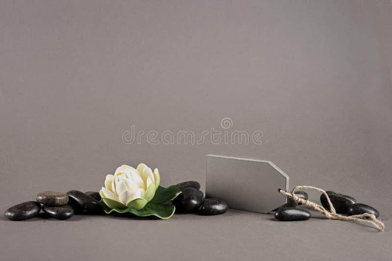 Flor do bem-estar e romântico fotografia de stock