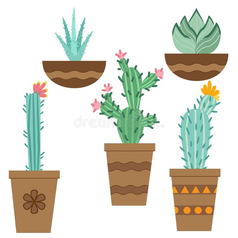 Flor do cacto em uns potenciômetros para flores e plantas Cactos brilhantes, folhas do aloés, flora tropical do deserto suculento ilustração stock