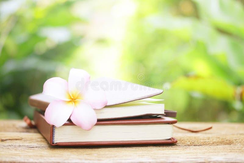 Flor do caderno e do Frangipani na tabela de madeira fotografia de stock royalty free