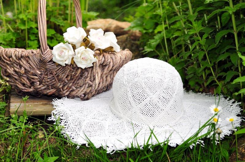 Flor do chapéu do jardim do verão fotografia de stock