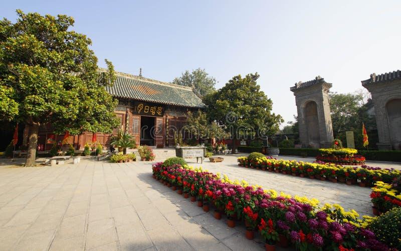 Flor do crisântemo em construções antigas em Henan, China foto de stock royalty free
