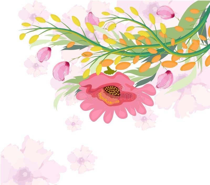 Flor do fúcsia da aquarela ilustração do vetor