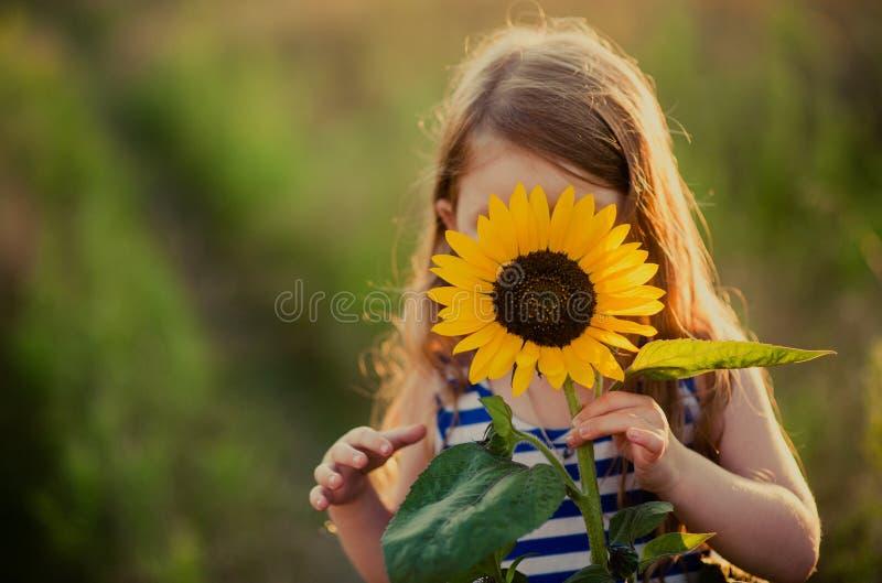 Flor do girassol nas mãos de uma criança imagem de stock royalty free