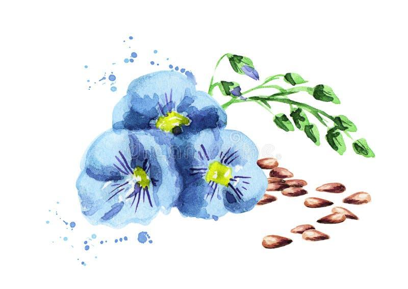 Flor do linho ilustração do vetor
