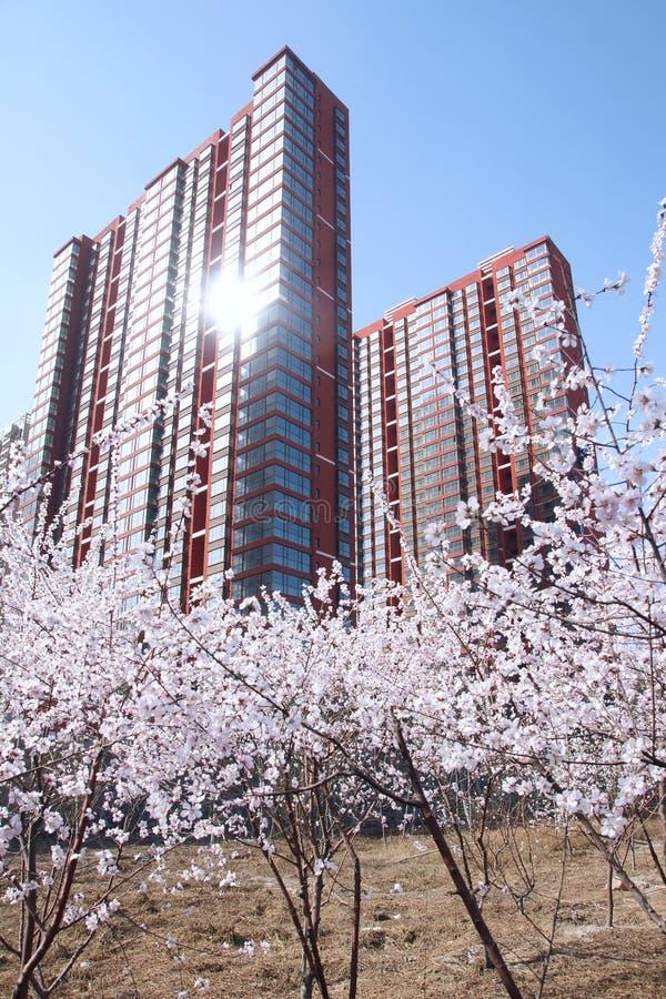Download Mola imagem de stock. Imagem de azul, edifícios, de, jardim - 29846013