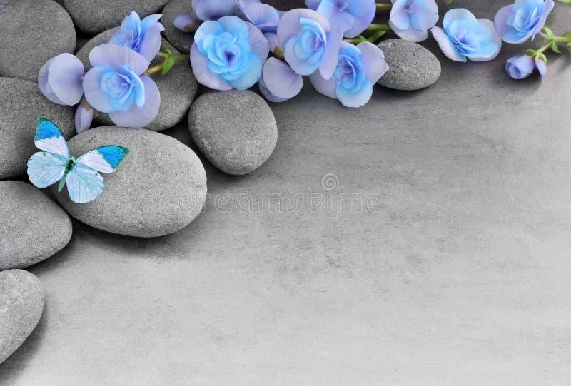 Flor e borboleta azuis no fundo de pedra imagem de stock