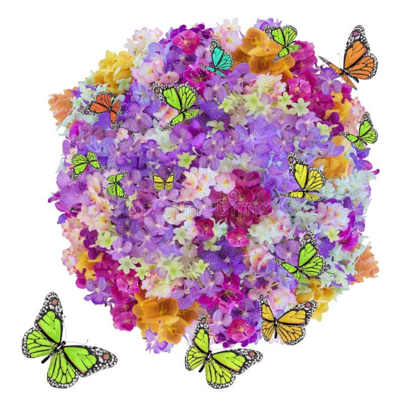 Flor e borboleta da abundância ilustração do vetor