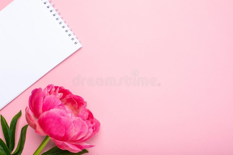 Flor e caderno cor-de-rosa bonitos da peônia com espaço da cópia para seu texto no fundo cor-de-rosa pastel foto de stock royalty free