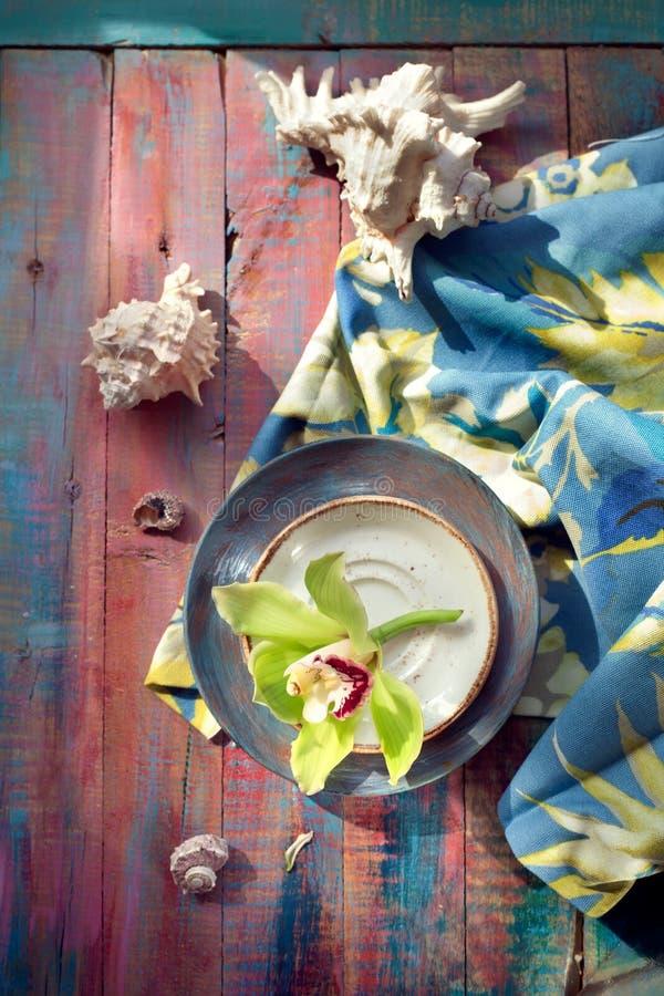 Flor e conchas do mar da orquídea, no backgrou de madeira brilhantemente colorido foto de stock royalty free
