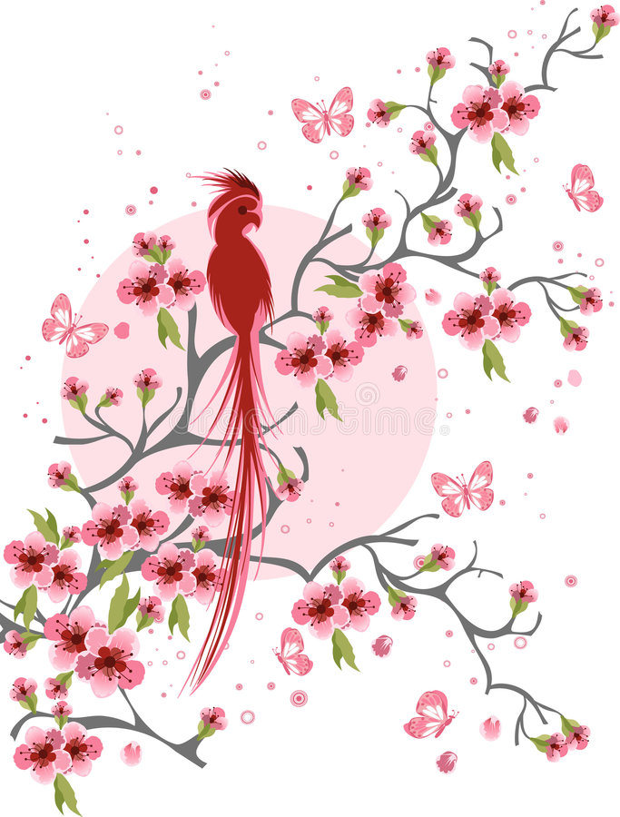 Flor e pássaro de cereja imagem de stock royalty free
