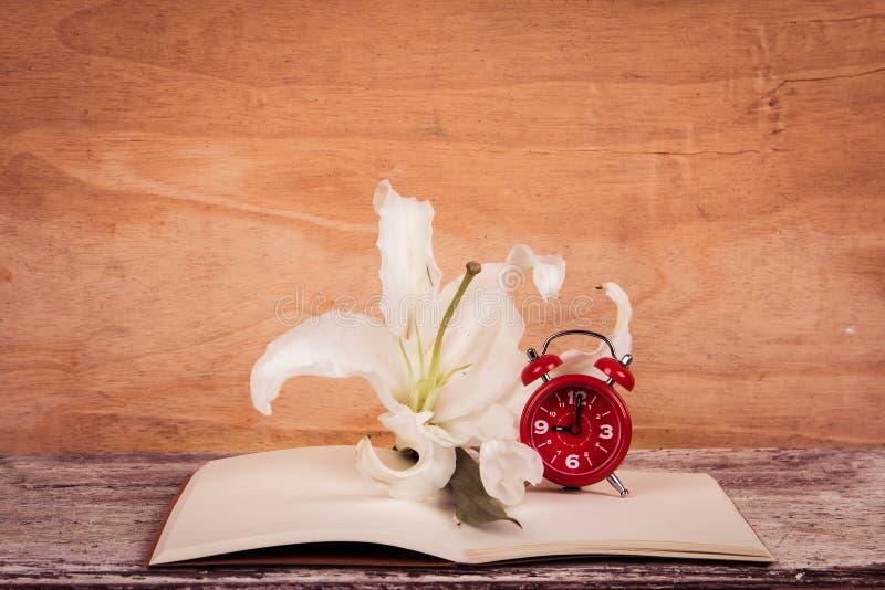 Download Flor E Relógio De Lilly No Livro De Nota Imagem de Stock - Imagem de lazer, paperback: 65581303