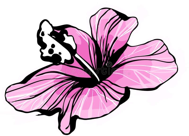flor em botão de florescência do hibiscus do esboço (2) .jpg ilustração stock
